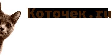 Коточек.ru